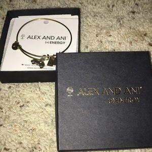 Alex and ani car bracelet